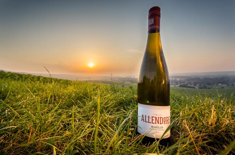 Weinverkostung – Riesling und Spätburgunder vom Weingut Familie Allendorf, Rheingau