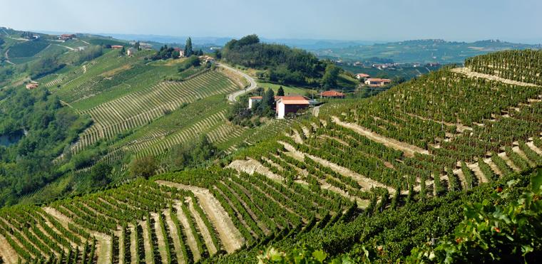 Italien und seine Weine